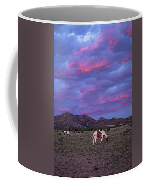 Southwest Coffee Mug featuring the photograph Horses With New Mexico Sunset by Enrique Navarro