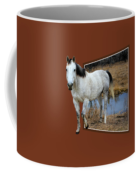 Horse Coffee Mug featuring the photograph Horsing Around by Shane Bechler
