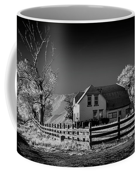 American Coffee Mug featuring the photograph House And Cottonwoods by Maria Coulson