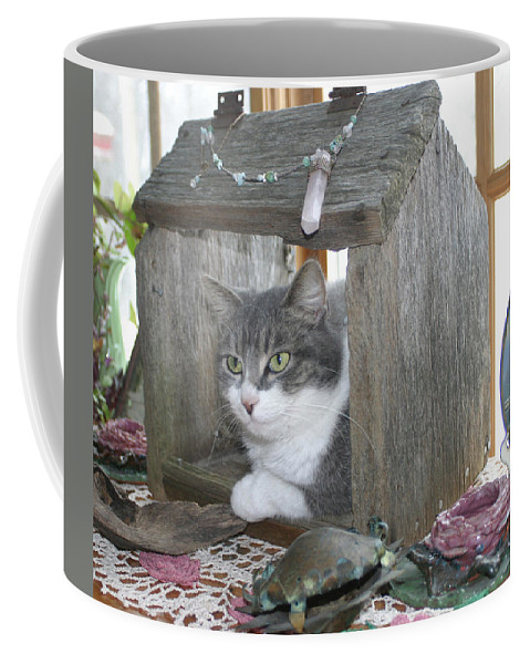 House Cat Coffee Mug featuring the photograph House Cat by Bjorn Sjogren