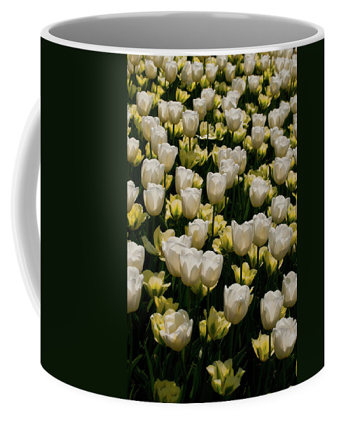 Coffee Mug featuring the photograph House Of White by Trish Tritz