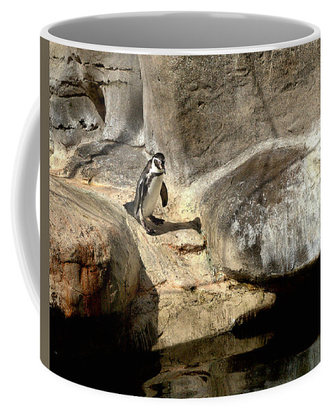 Santa Coffee Mug featuring the photograph Humboldt Penguin 1 by Michael Gordon