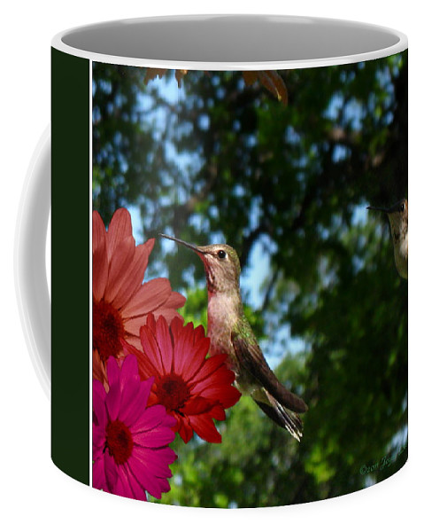 Bird Coffee Mug featuring the photograph Hummers And Colored Daisies by Joyce Dickens