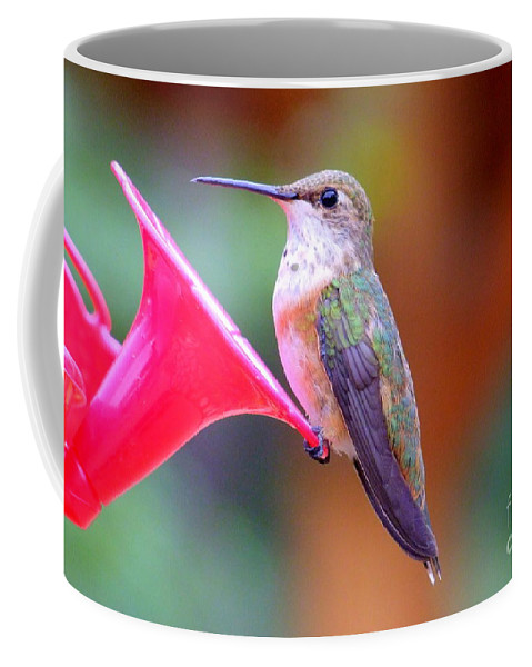 Bird Coffee Mug featuring the photograph Hummingbird - 18 by Mary Deal