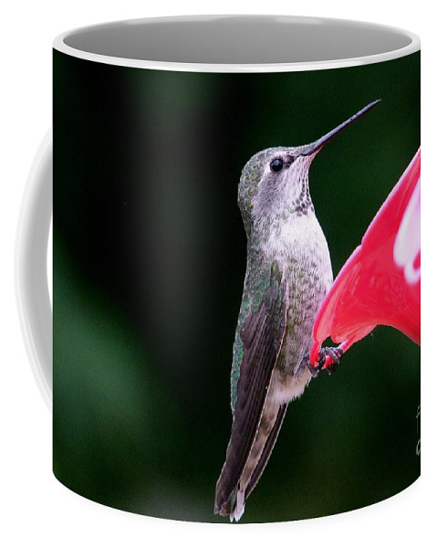 Red Coffee Mug featuring the photograph Hummingbird 23 by Mary Deal