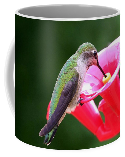 Red Coffee Mug featuring the photograph Hummingbird 33 by Mary Deal