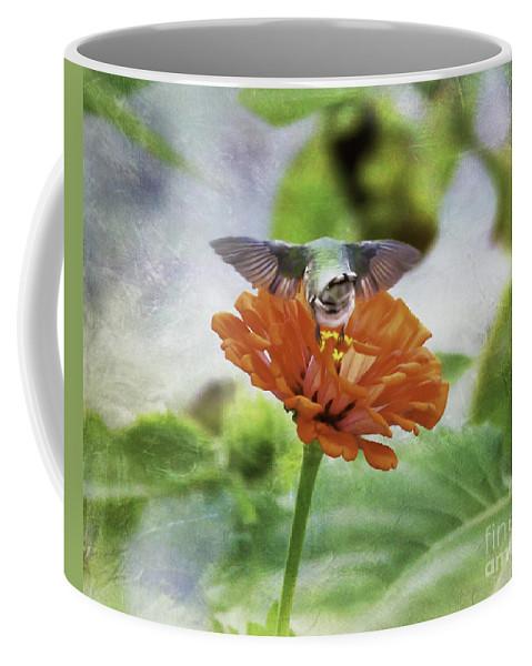 Hummingbird Coffee Mug featuring the photograph Hummingbird Bow by Kerri Farley