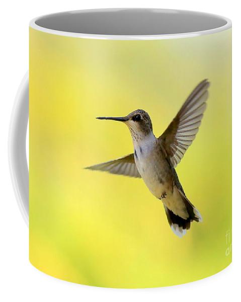 Hummingbird Coffee Mug featuring the photograph Hummingbird In Yellow by Carol Groenen