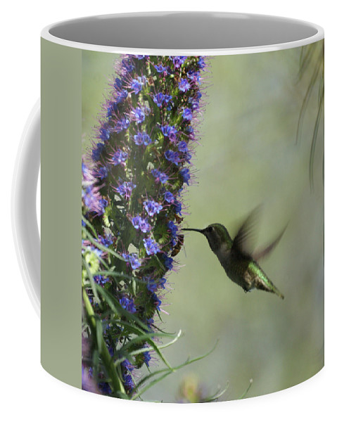 Hummingbird Coffee Mug featuring the photograph Hummingbird Sharing by Ernie Echols