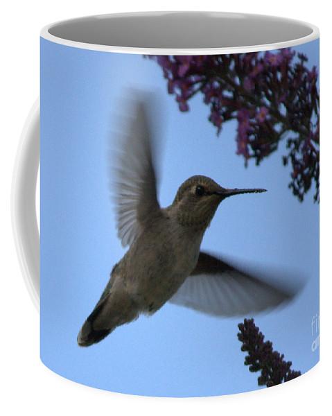 Hummingbird Coffee Mug featuring the photograph Hummingbird Wings And Butterfly Bush by Carol Groenen