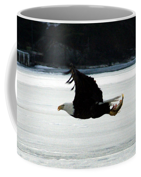 American Eagle Bird Flying Wings Fish Nature Wild Animal Coffee Mug featuring the photograph Hungry Eagle by Andrea Lawrence