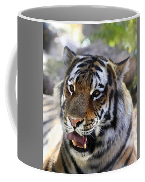 Animal Coffee Mug featuring the photograph Hungry Eyes by Marilyn Hunt