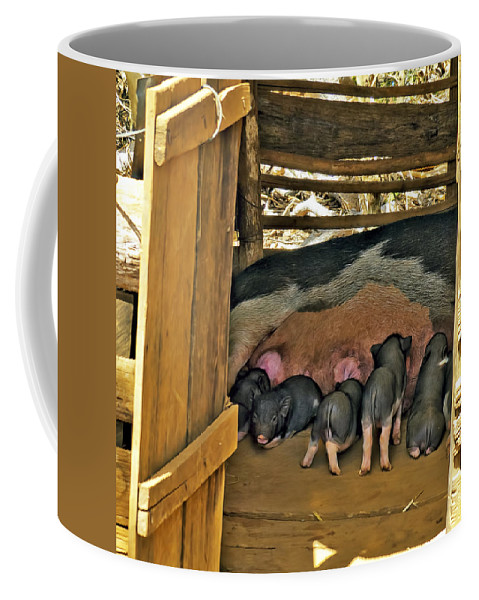Vietnam Coffee Mug featuring the photograph Hungry Piglets by Claude LeTien