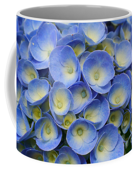 Flora Coffee Mug featuring the photograph Hydrangea Closeup by Gaspar Avila
