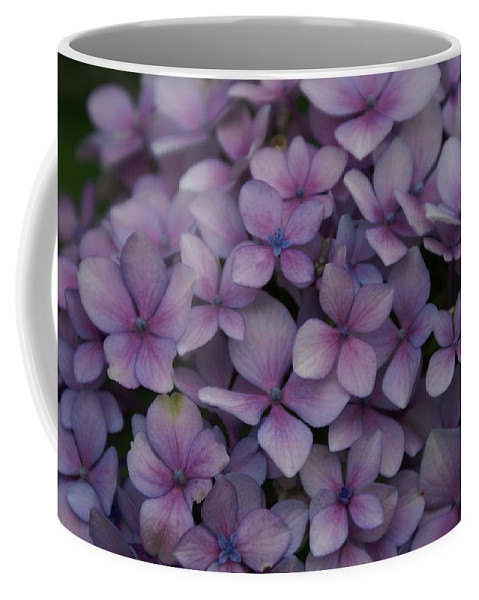 Hydrangea Coffee Mug featuring the photograph Hydrangea In Lavender 1 by Jacqueline Russell