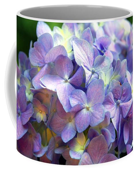 Hydrangena Coffee Mug featuring the photograph Hydrangena by Susanne Van Hulst