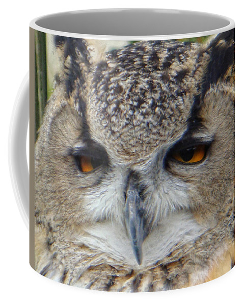 Owl Coffee Mug featuring the photograph I Ate Too Much by Donna Blackhall