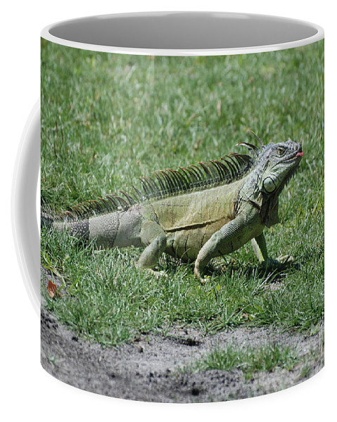 Macro Coffee Mug featuring the photograph I Iguana by Rob Hans