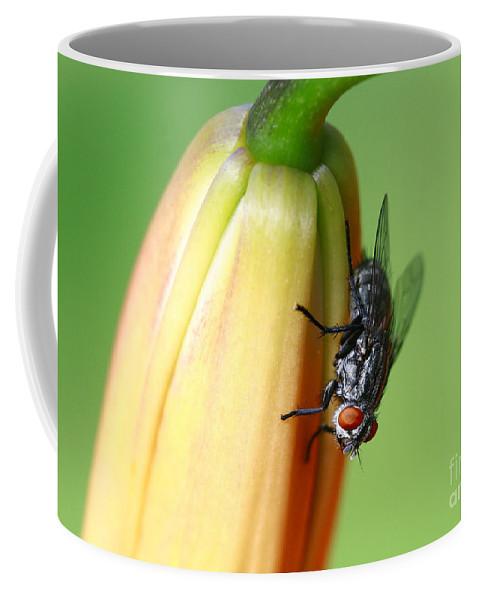 Macro. Fly Coffee Mug featuring the photograph I Like Flowers by Deborah Benoit