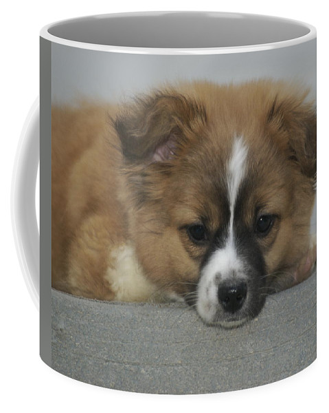 Lonely Coffee Mug featuring the photograph I Miss You by Michael Peychich