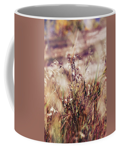 Fall Coffee Mug featuring the photograph I Ran Through Wind by The Artist Project