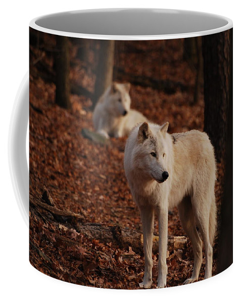 Wolf Coffee Mug featuring the photograph I See It Too by Lori Tambakis