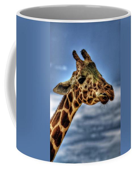 Giraffe Coffee Mug featuring the photograph I See You by Saija Lehtonen