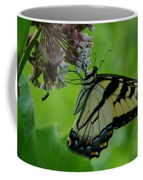 Jenny Gandert Coffee Mug featuring the photograph I Want To Be A Butterfly by Jenny Gandert
