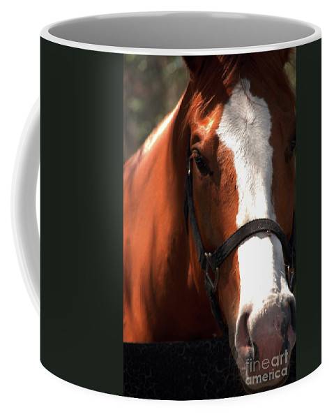 Horse Coffee Mug featuring the photograph I Was Waiting For You by Susanne Van Hulst