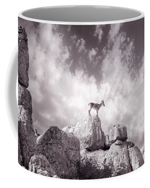 Ibex Coffee Mug featuring the photograph Ibex -the Wild Mountain Goats In The El Torcal Mountains Spain by Mal Bray