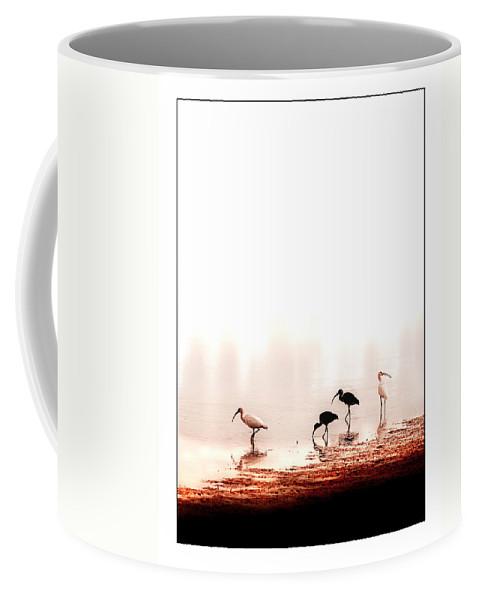 Ibis Coffee Mug featuring the photograph Ibis by Mal Bray