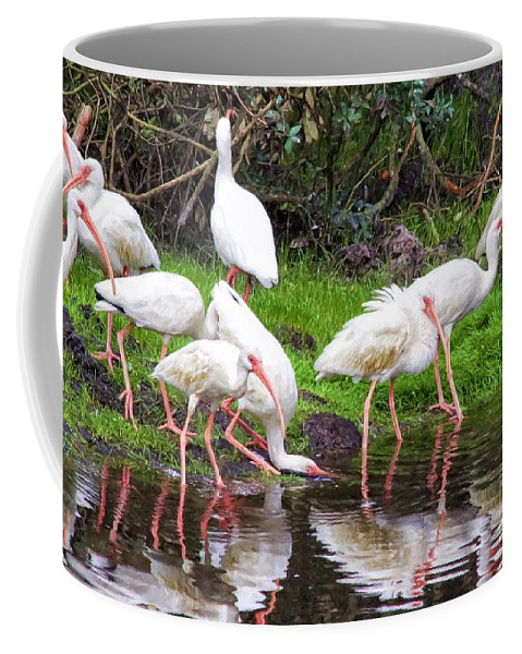 Alicegipsonphotographs Coffee Mug featuring the photograph Ibis Reflections by Alice Gipson