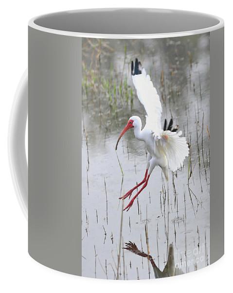Ibis Coffee Mug featuring the photograph Ibis Soft Water Landing by Carol Groenen