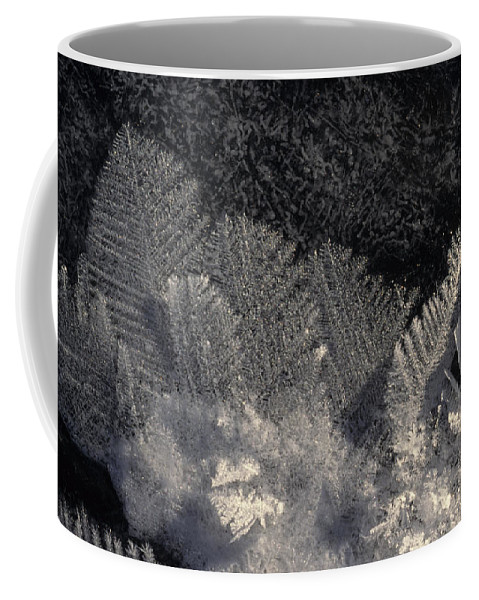 Nobody Coffee Mug featuring the photograph Ice Crystals Form Feather Shapes On Ice by Michael S. Quinton