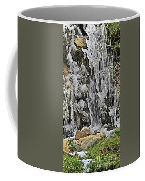 Ice Coffee Mug featuring the photograph Ice Droplets by Moshe Torgovitsky
