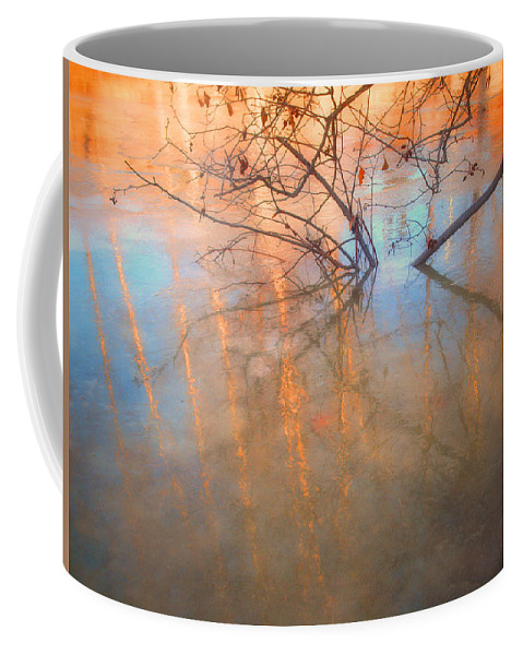 Ice Coffee Mug featuring the photograph Ice Reflections 2 by Tara Turner