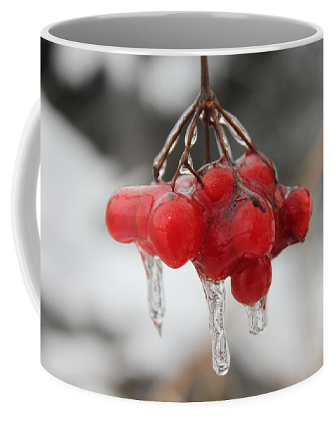 Ice Coffee Mug featuring the photograph Ice Wrapped Berries by Lauri Novak
