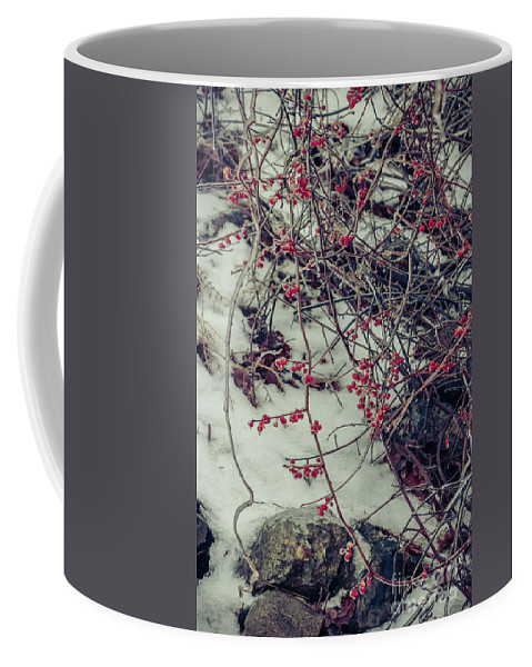 Winter Coffee Mug featuring the photograph Icy Berries by Claudia M Photography