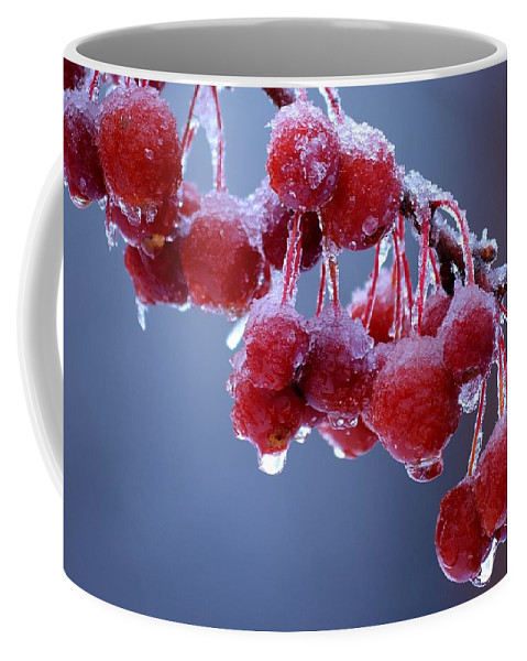 Winter Coffee Mug featuring the photograph Icy Berries by Lisa Kane