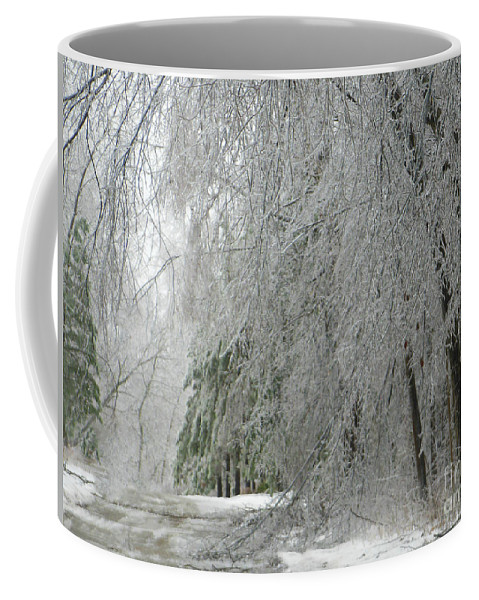 Icy Coffee Mug featuring the photograph Icy Street Trees by Rockin Docks Deluxephotos