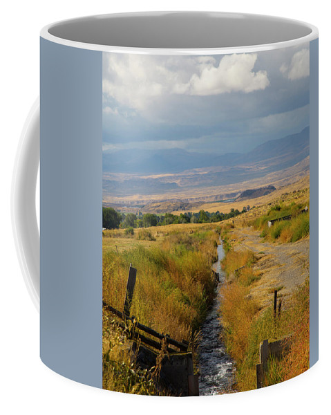 Idaho Coffee Mug featuring the photograph Idaho Stream by Dart and Suze Humeston