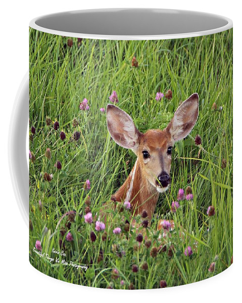 Deer Coffee Mug featuring the photograph Id'st Hiding In The Flowers by Kevin Cox