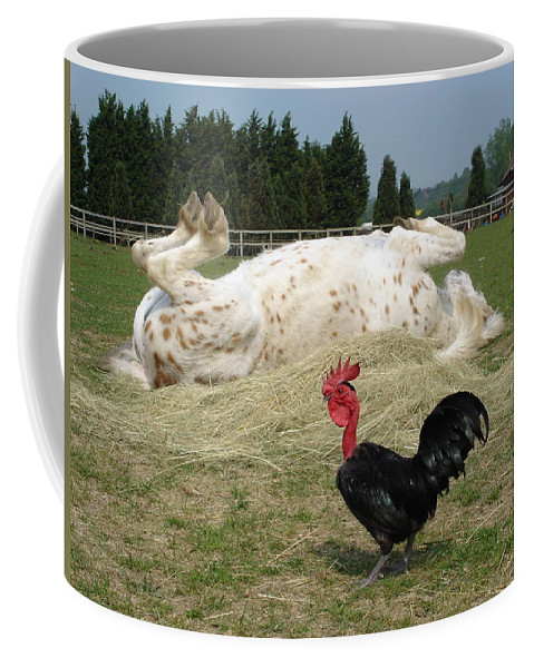 Pony Coffee Mug featuring the photograph If Looks Could Kill by Susan Baker