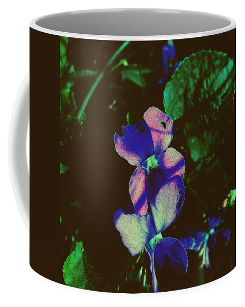 Wildflowers Coffee Mug featuring the photograph Illuminated Wildflowers by Paul Kercher