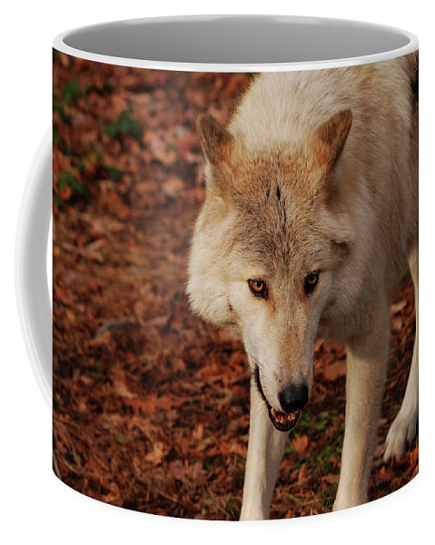 Wolf Coffee Mug featuring the photograph I'm Coming For You by Lori Tambakis