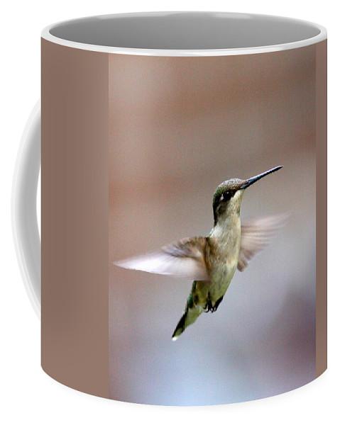 Ruby-throated Hummingbird Coffee Mug featuring the photograph Img_3085 - Ruby-throated Hummingbird by Travis Truelove