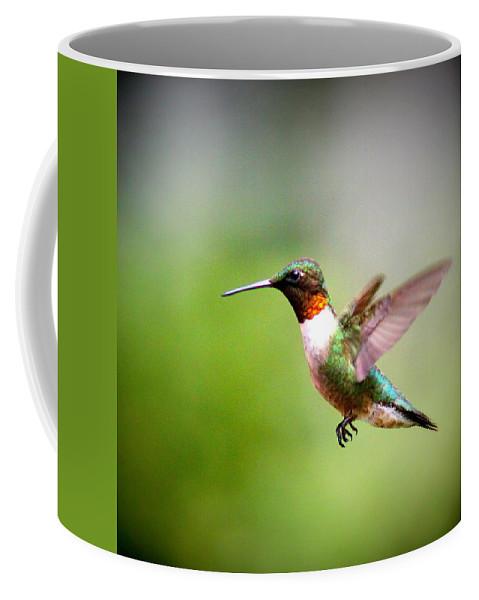 Coffee Mug featuring the photograph Img_5065 by Travis Truelove