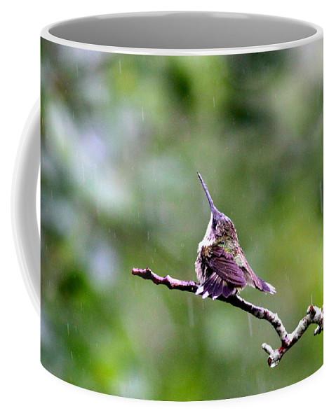 Ruby-throated Hummingbird Coffee Mug featuring the photograph Img_5271-001 - Ruby-throated Hummingbird by Travis Truelove