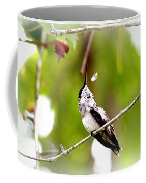 Ruby-throated Hummingbird Coffee Mug featuring the photograph Img_7436-020 - Ruby-throated Hummingbird by Travis Truelove