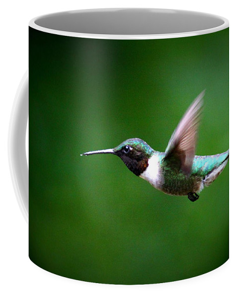 Ruby-throated Hummingbird Coffee Mug featuring the photograph Img_7668-003 - Ruby-throated Hummingbird by Travis Truelove